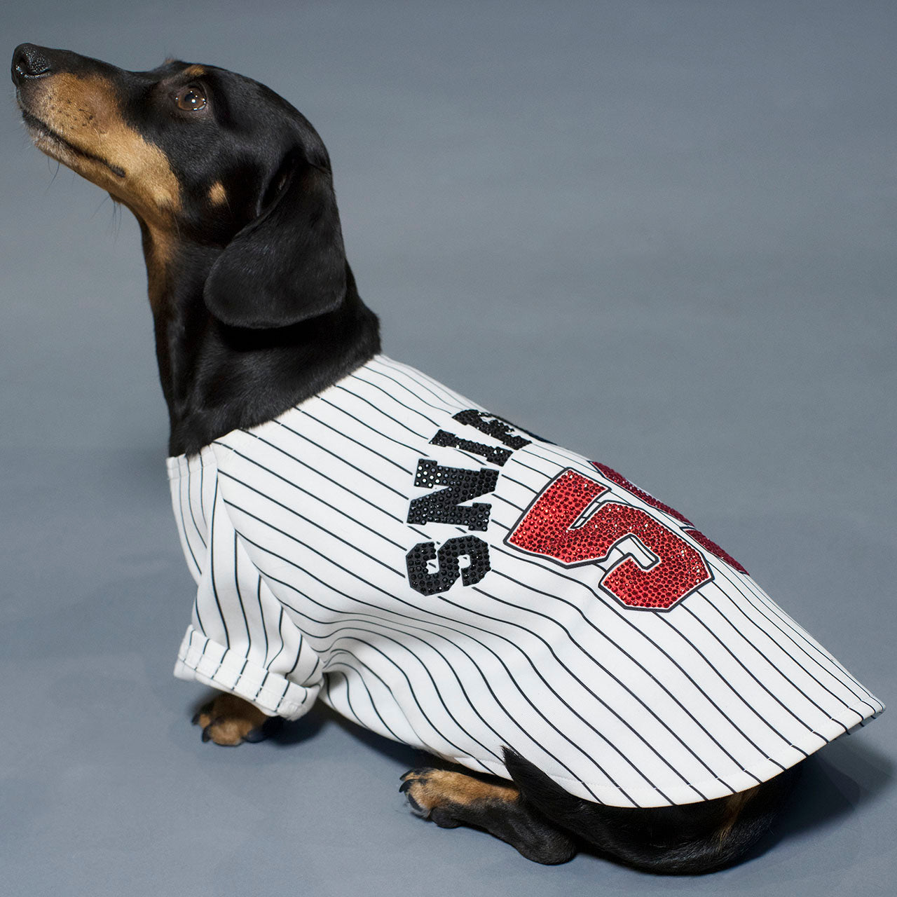 Sniffie Dog Fashion Baseball Sportswear with Crystals