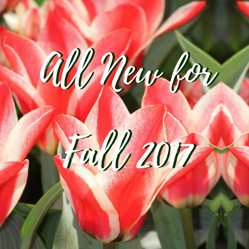 Look What's Blooming in Spring! - All New Bulbs & Perennials for Fall Planting 2017!