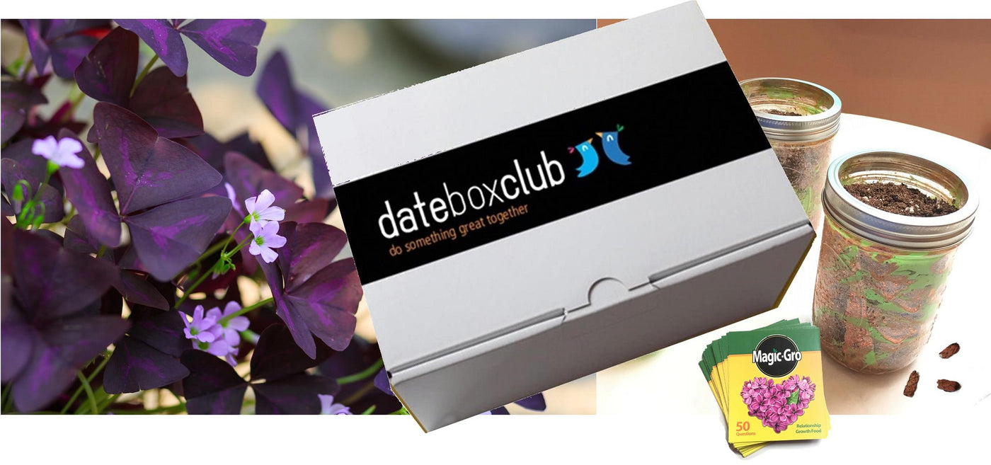 Datebox Club Review & Unboxing with Easy to Grow Bulbs!