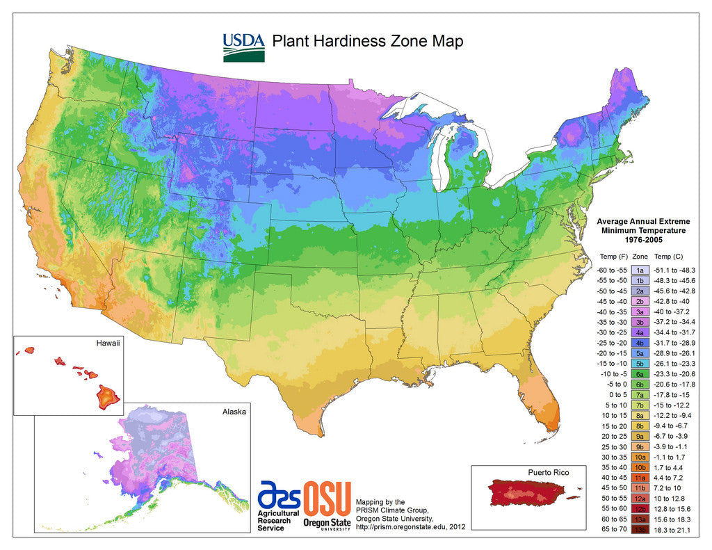 climate zone info easy to grow bulbs