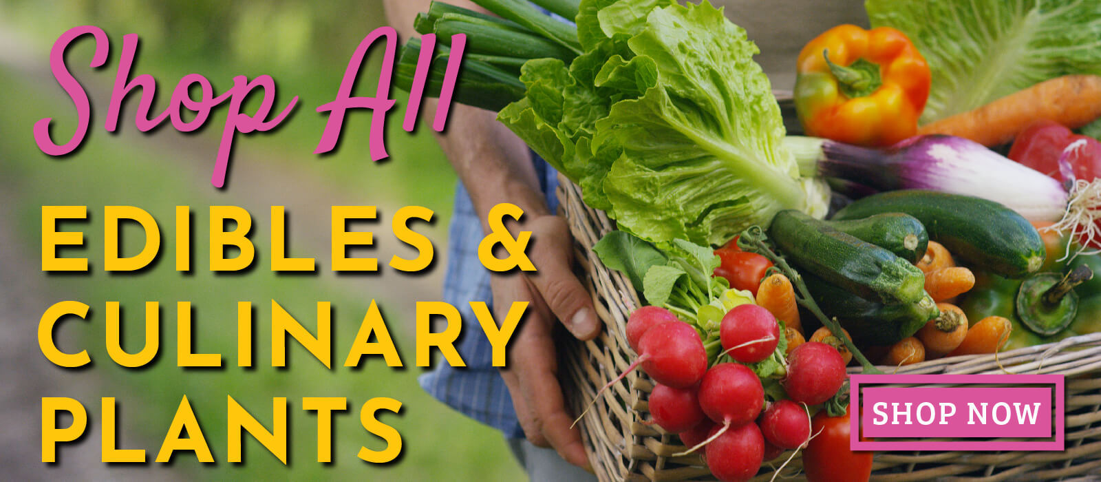 shop all edibles and culinary plants banner