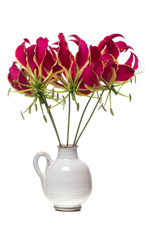 Gloriosa lilies in a vase