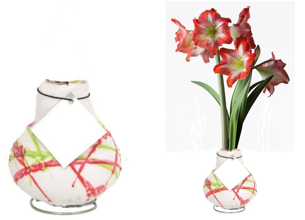 wax dipped amaryllis bulbs play on the biological imperative to bloom
