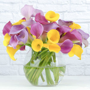 Calla Lily Spring Fever Collection