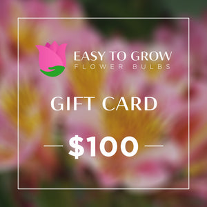 products/ETGB-GiftCard-100.jpg