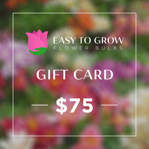 products/ETGB-GiftCard-75.jpg