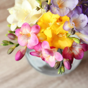 Freesia Cottage Garden Collection