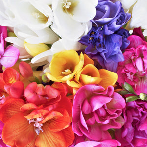 Double mix freesia flowers