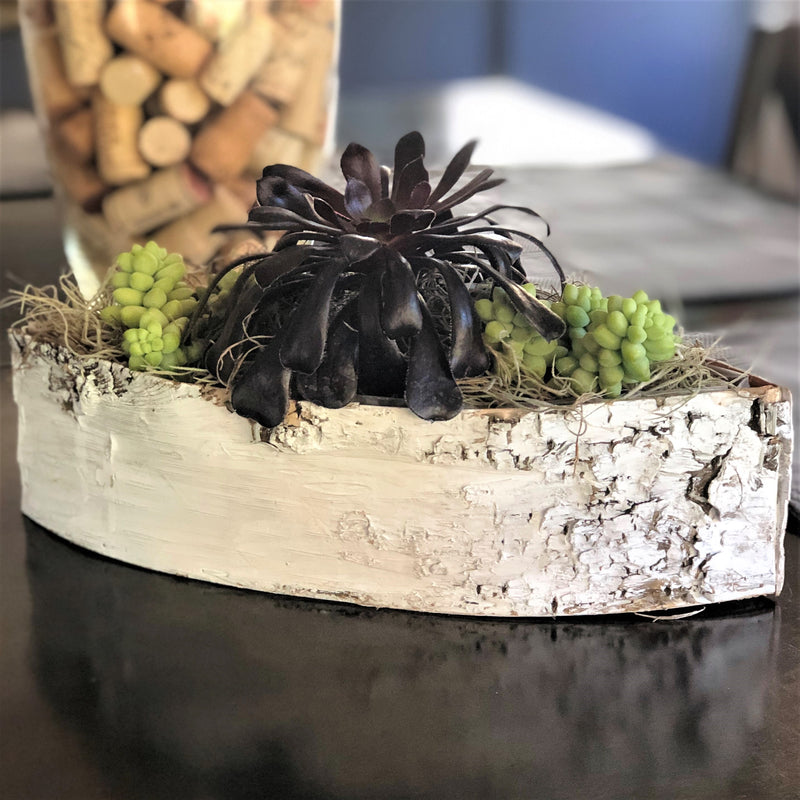 Succulents in a white birch boat - houseplant gift
