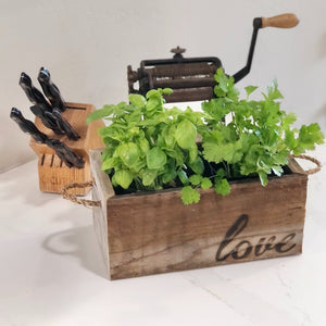 Herb Gift Duo in a Reclaimed Wood Planter