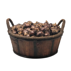 products/Paperwhites_Bordeaux_Basket_WhiteBackground.ETGB.jpg