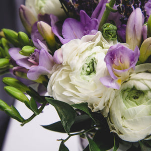 "Freesia & Ranunculus Blend - ""Blueberries & Cream"""