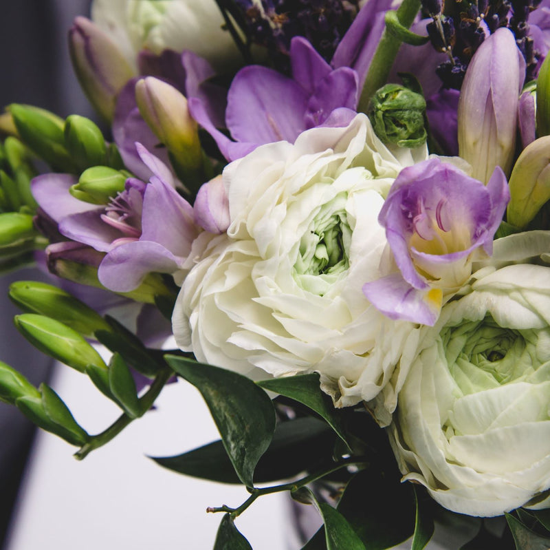 Close up on blueberries & Cream freesia and ranunculus blend