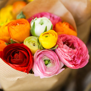 products/Ranunculus_Rainbow_Mix.SHUT.SQ.jpg