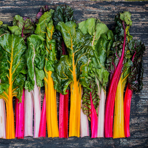 Five Color Swiss Chard