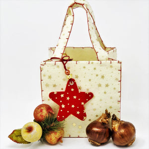Paperwhite Gift in a Starry Felt Tote - FREE SHIPPING!