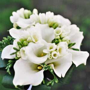Bouquet of Freesia and Calla Blend White Clouds