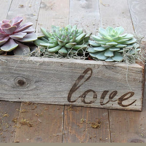 Succulents Trio in Reclaimed Wood Planter with Love - FREE Shipping!