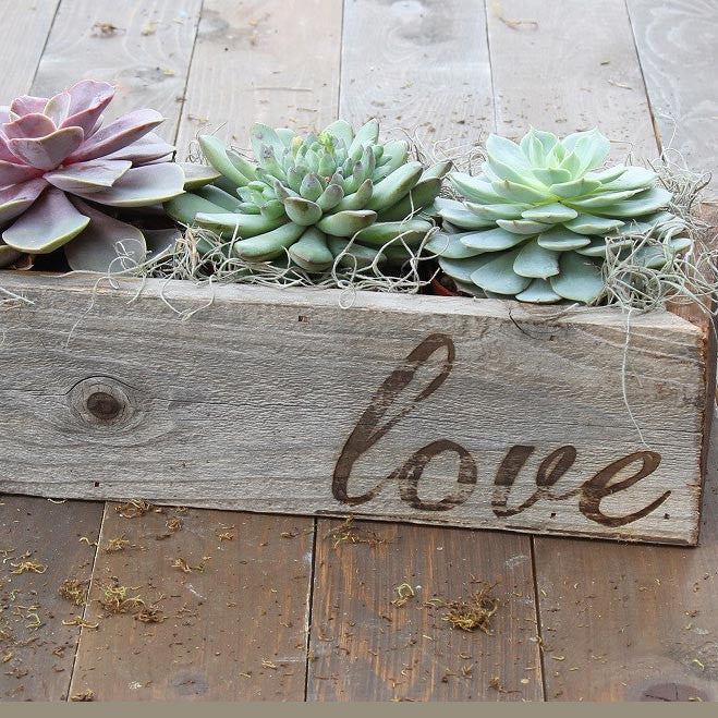 Succulents Trio in Reclaimed Wood Planter with Love