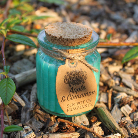 Fragrant Soy Pot Candles - Divine Yoga Shop