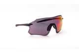 Darcs Edge Sunglasses.