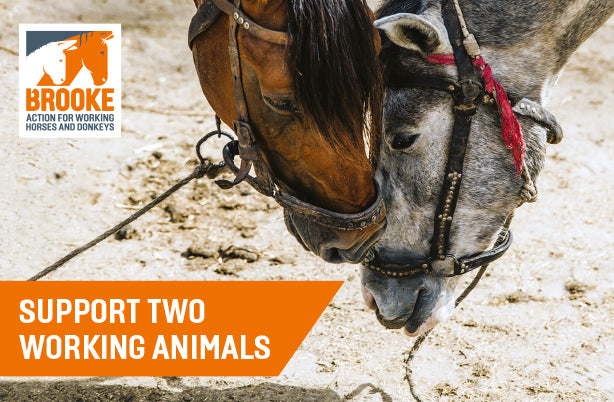 Support two working animals