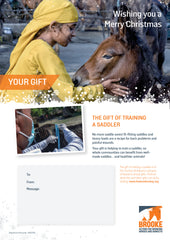 The gift of training a saddler