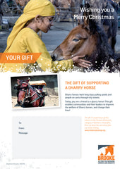 The gift of supporting a gharry horse