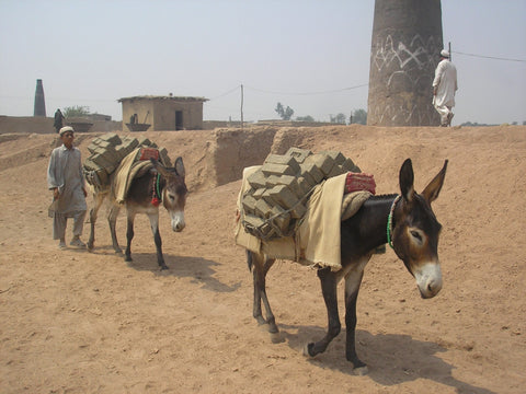 Care for a brick kiln donkey