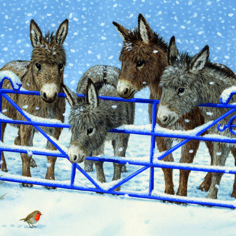 Donkeys by a gate