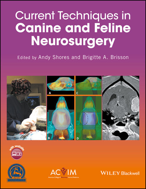 Current Techniques in Canine and Feline Neurosurgery