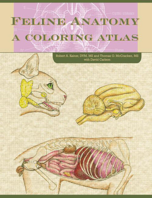 Feline Anatomy: A Coloring Atlas
