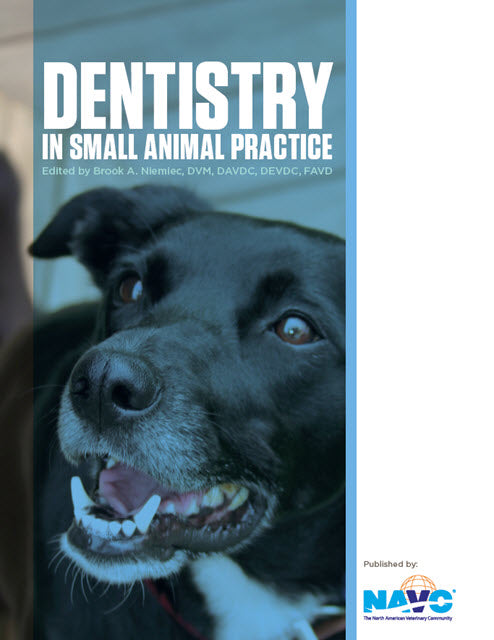 Dentistry in Small Animal Practice