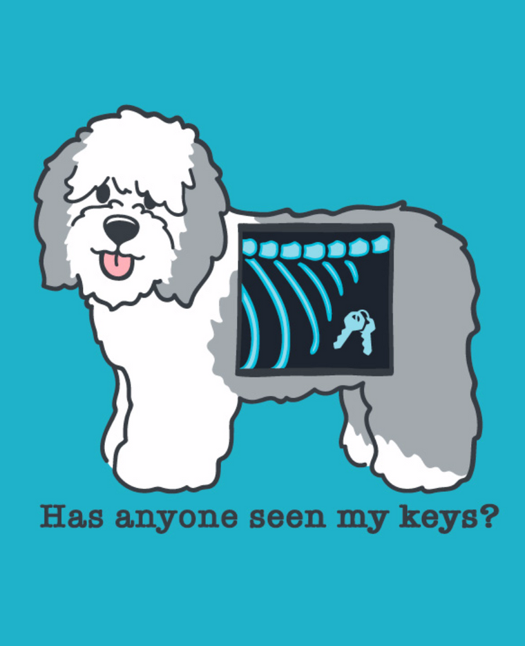 """Has anyone seen my keys?"" Men's T-Shirt"