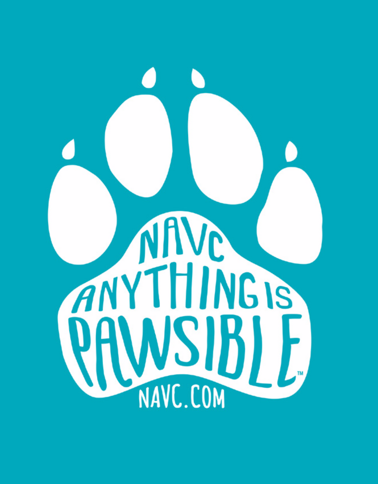 """Anything is Pawsible"" Men's T-Shirt (Blue)"