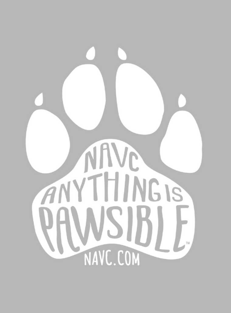 """Anything is Pawsible"" T-Shirt (Grey)"