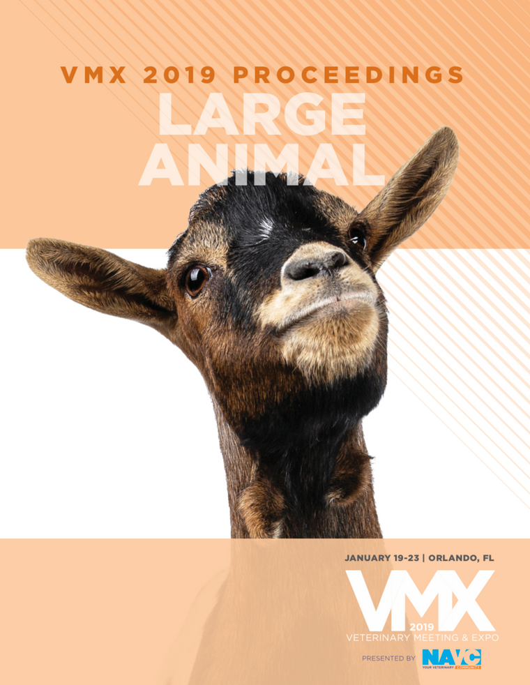 2019 VMX Large Animal Proceedings