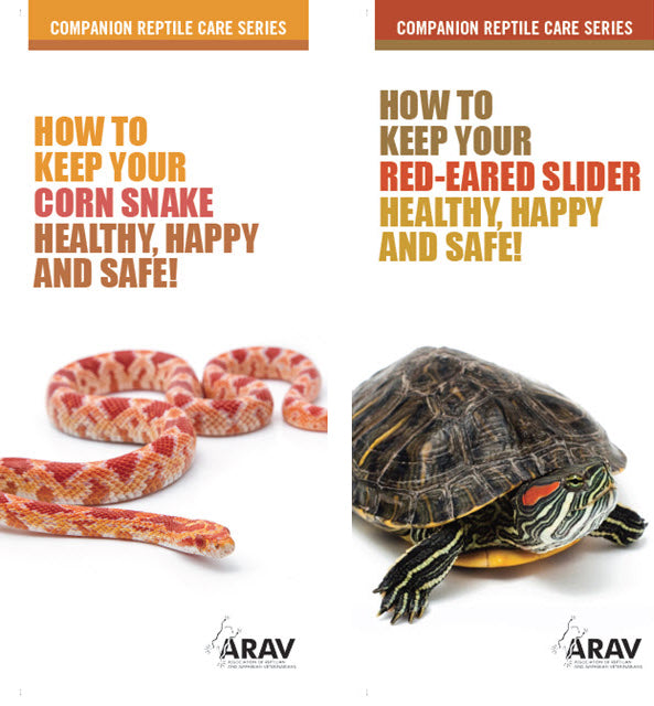 ARAV Companion Care Series Brochures Bundle