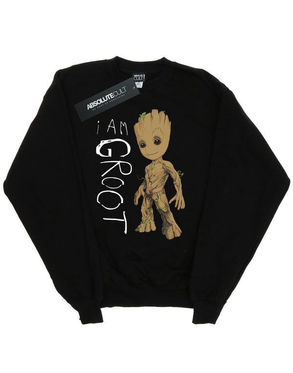 Marvel Boys Guardians Of The Galaxy I Am Groot Scribbles Sweatshirt