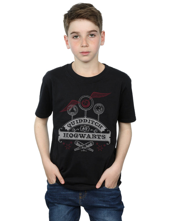 Harry Potter Boys Quidditch At Hogwarts T-Shirt