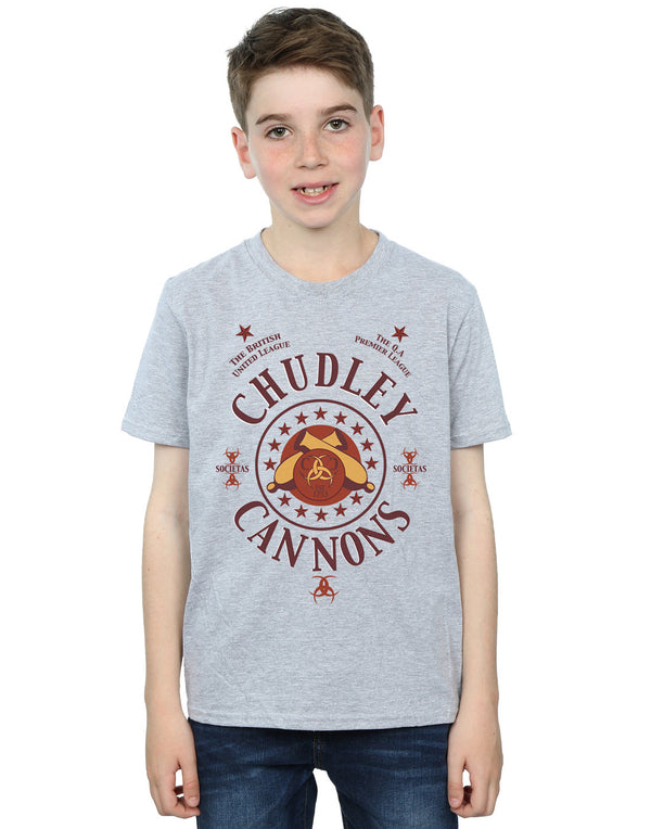 Harry Potter Boys Chudley Cannons Logo T-Shirt