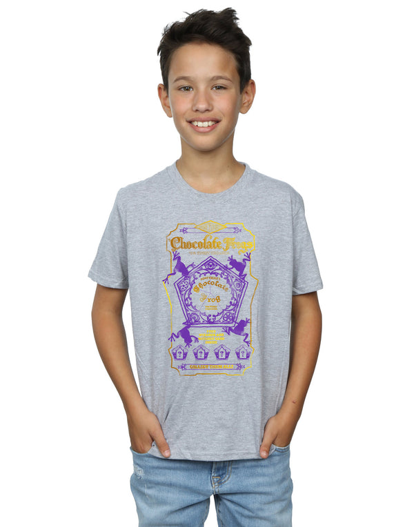 Harry Potter Boys Chocolate Frogs Coloured Label T-Shirt | Absolute Cult