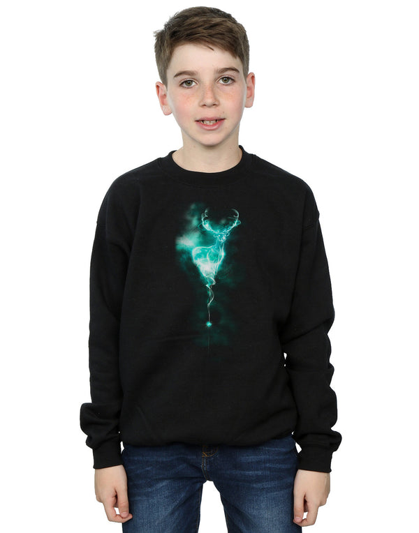 Harry Potter Boys Stag Patronus Mist Sweatshirt | Absolute Cult