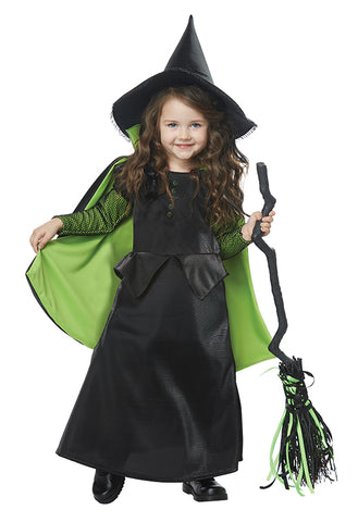 Wicked Witch of Oz-Toddler Costume