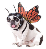 Pet Costume-Butterfly