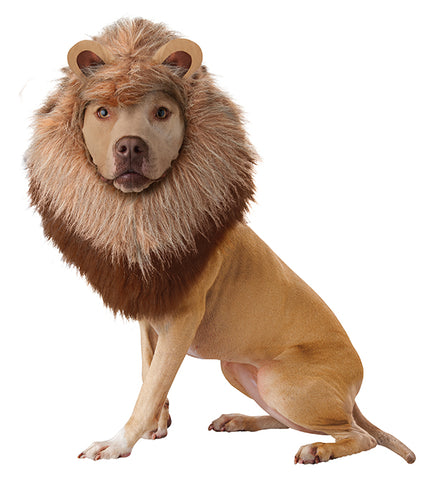 Pet Costume-Lion