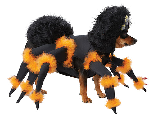 Pet Costume-Spider Pup