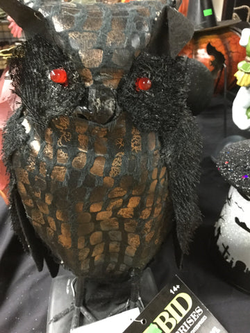 Standing Red Eye Owl