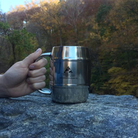 Stainless Steel DRN Mug