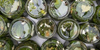 How Does Lacto-Fermentation Work?